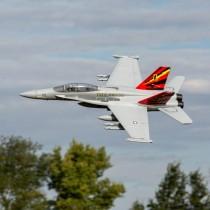 E-Flite_EFL3950_F-18_Hornet_80mm_EDF_BNF_Basic