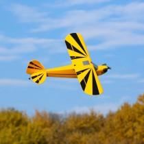 E-Flite_EFL5175_Clipped_Wing_Cub_1.2m_PNP
