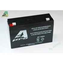 Promodel_Batterie_Plomb_6V_12AH