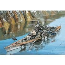 Revell_05160_Tirpitz_Platinum_Edition