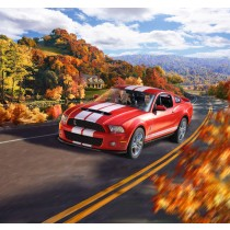 Revell_07044_Ford_Shelby_GT500_2010