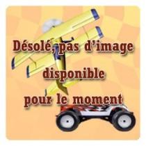 T2M_T422538-19_Galet_Banc_de_Demarrage